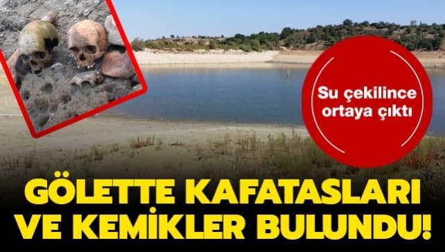 Çanakkale'de suyu boşaltılan göletten kafatasları ve kemikler çıktı!