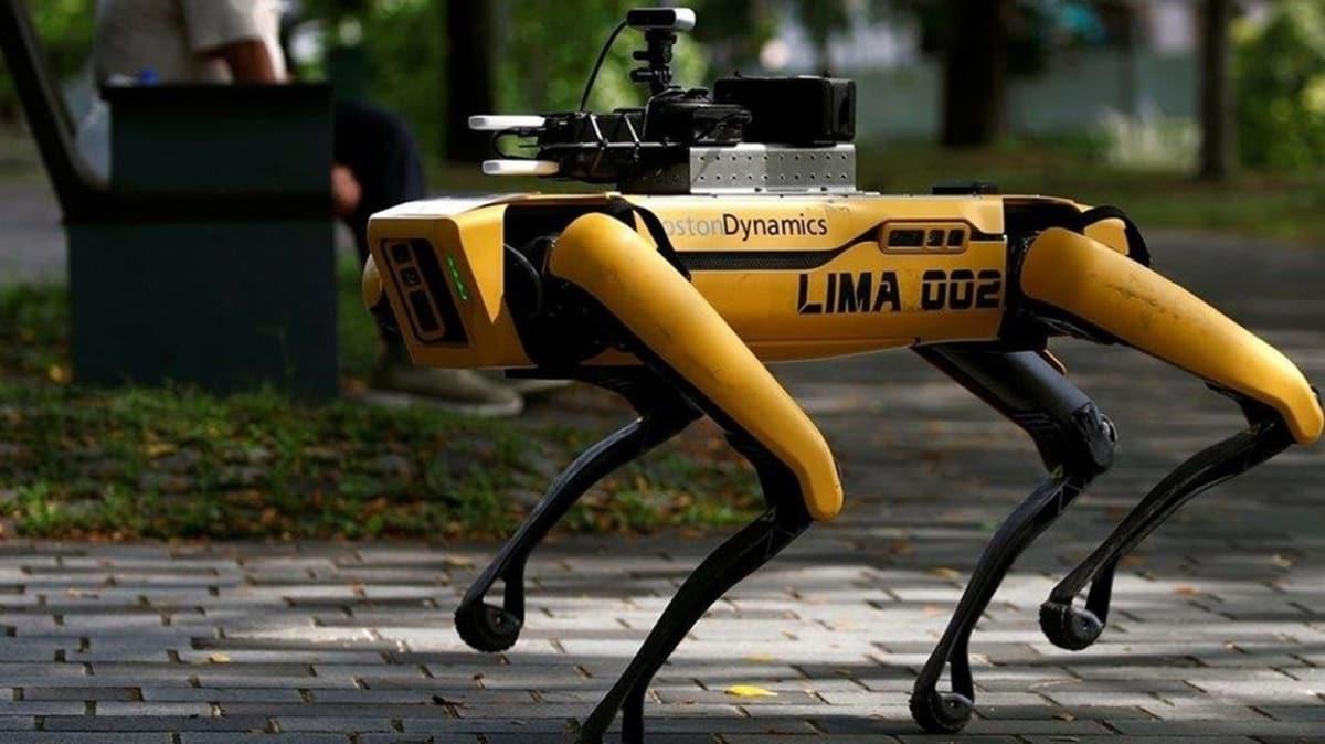 Boston Dynamics'ten yeni proje: Kuş robotlar