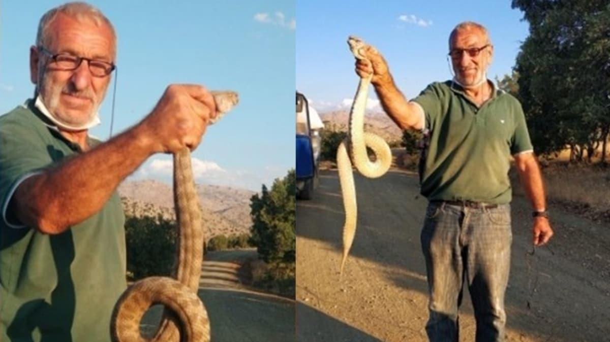 Türkiye'nin en zehirli yılanını eliyle yakaladı: Bir anda saldırdı