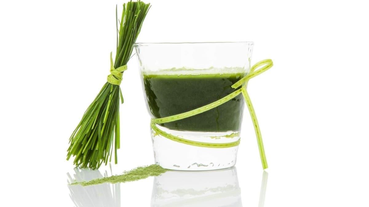 Bağışıklığı güçlendiren şifa: Arpa çimi! Arpa çiminin özellikleri