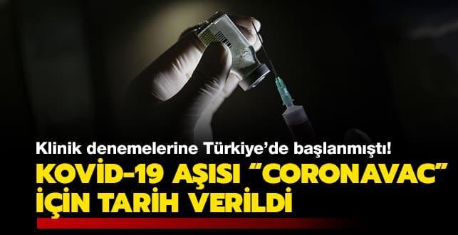 Klinik denemelerine Türkiye'de başlanmıştı: Kovid-19 aşısı 'CoronaVac' için tarih verildi