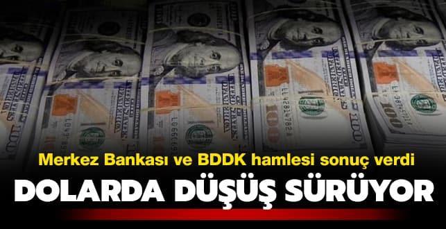 Merkez Bankası ve BDDK'nın hamlesi sonuç verdi: Dolarda düşüş sürüyor
