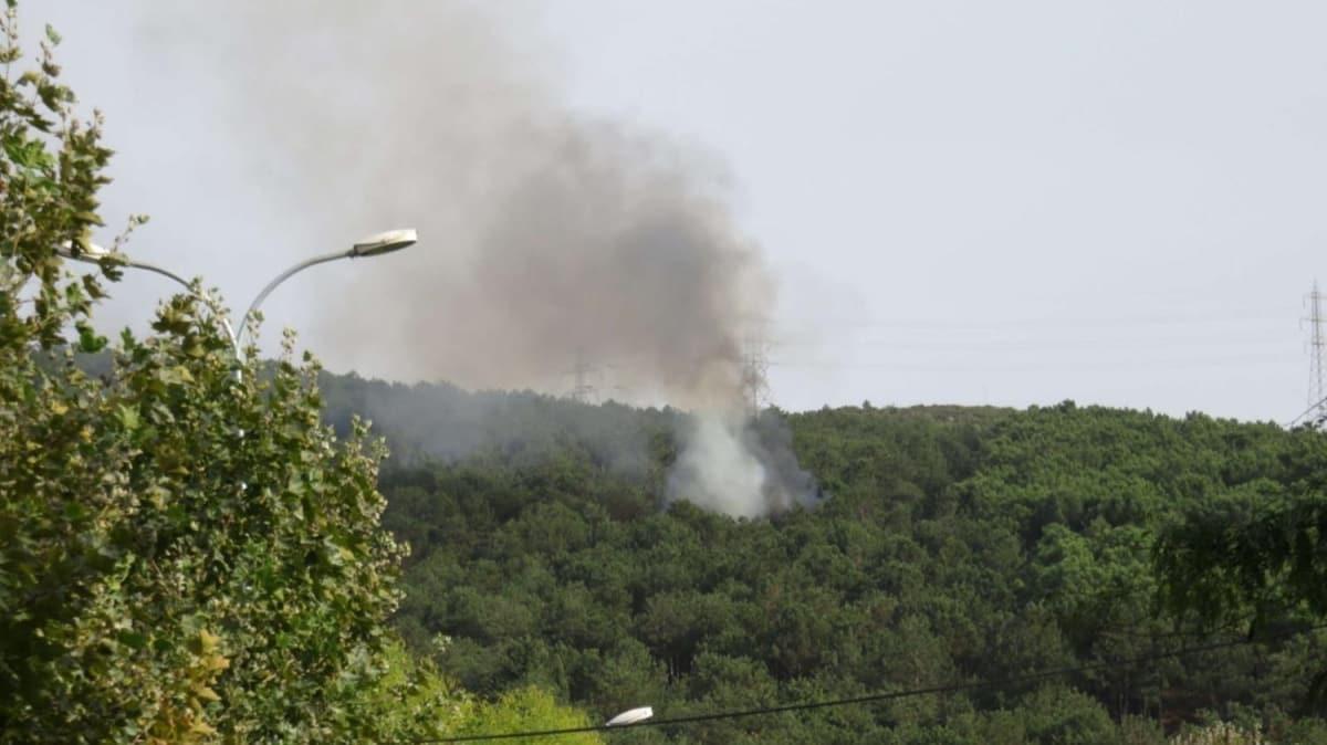 Aydos'ta ormanlık alanda yine yangın çıktı