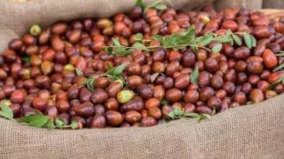 Hünnap meyvesinin faydaları nelerdir? Hünnap nasıl yenir, ne işe yarar?