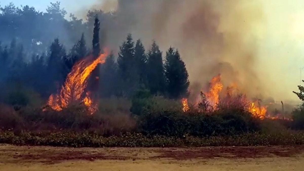 Kahramanmaraş'ta bir orman yangını daha