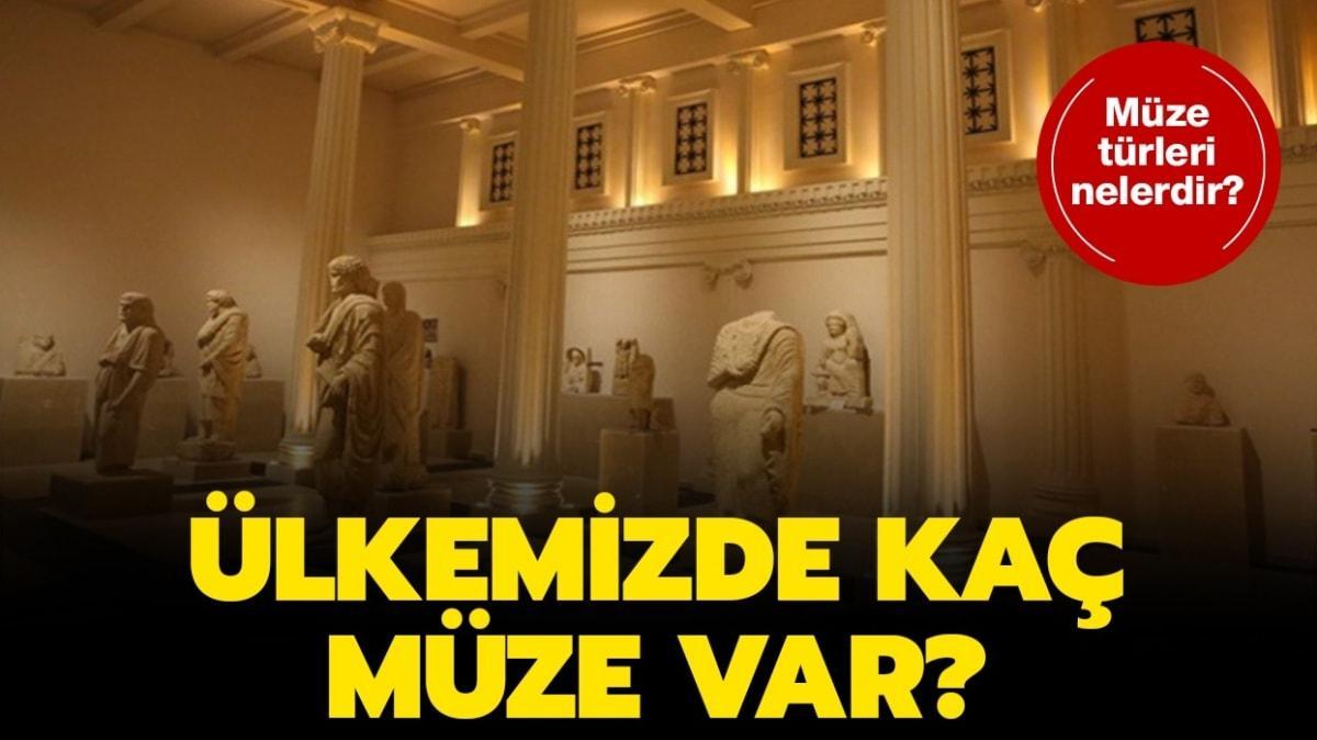 """Türkiye'de kaç müze var"""" Müze nedir, türleri nelerdir"""""""
