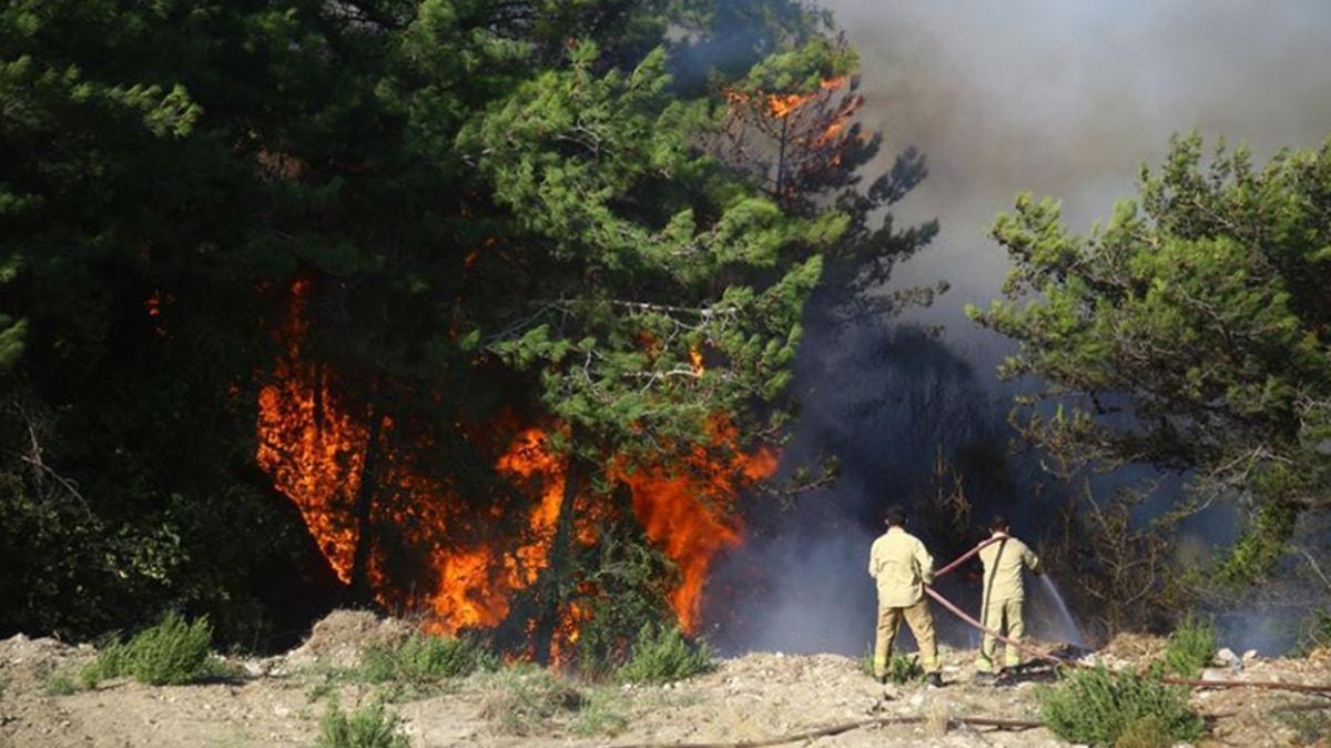 Orman yangınlarıyla ilgili gözaltına alınan 2 şüpheli tutuklandı