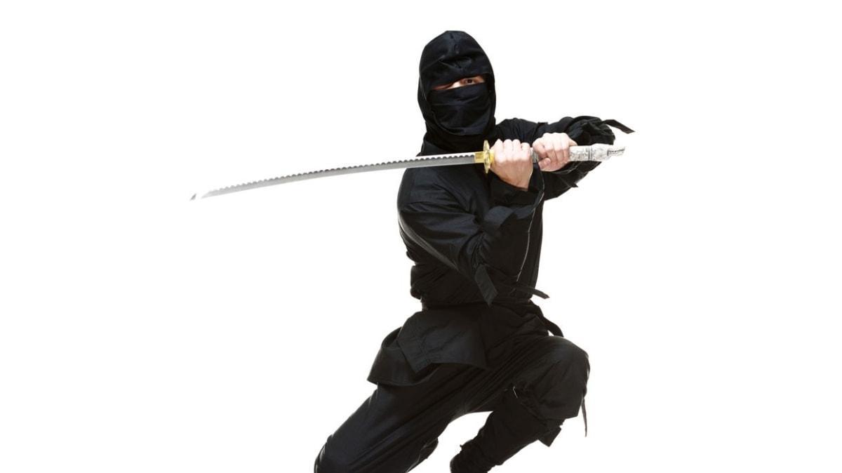 Diplomalı Ninjalar geliyor