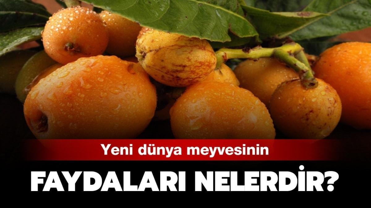 """Yeni dünya nedir, nerede yetişir"""" Yeni dünya meyvesinin faydaları..."""