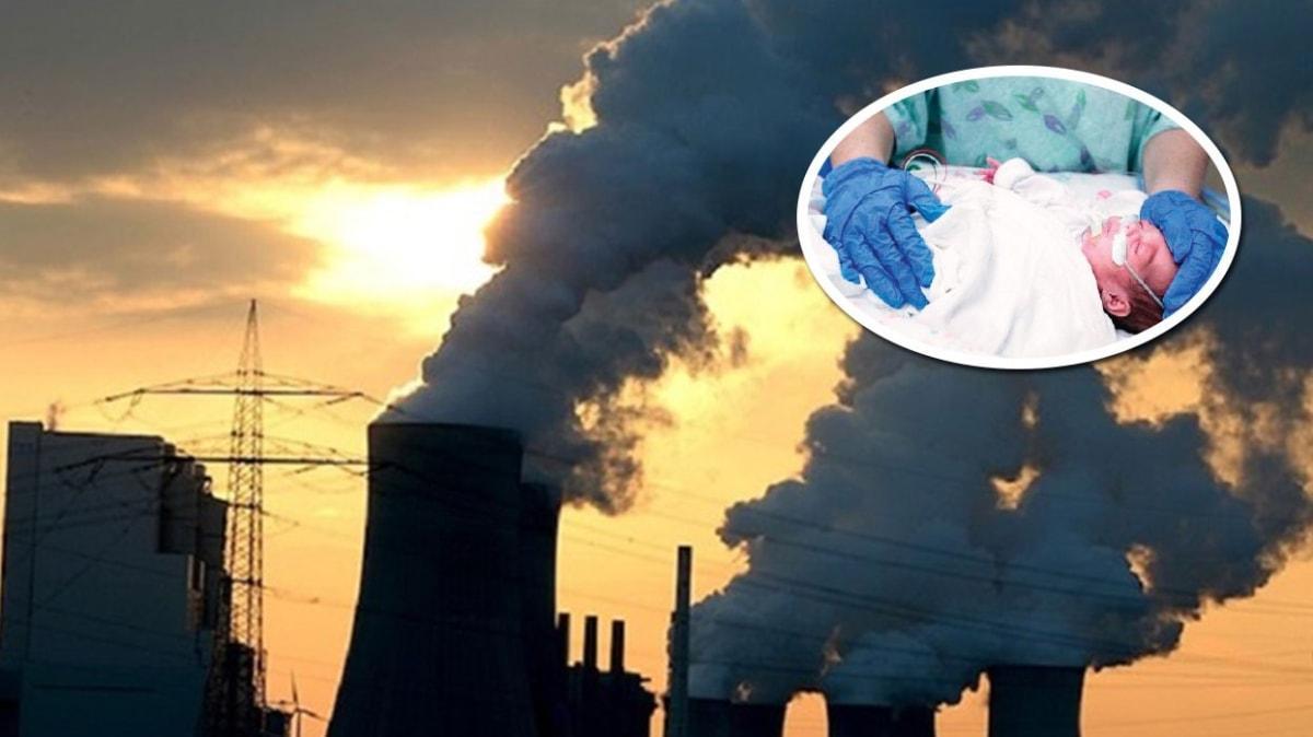 Yarım milyon bebeği kirli hava öldürdü