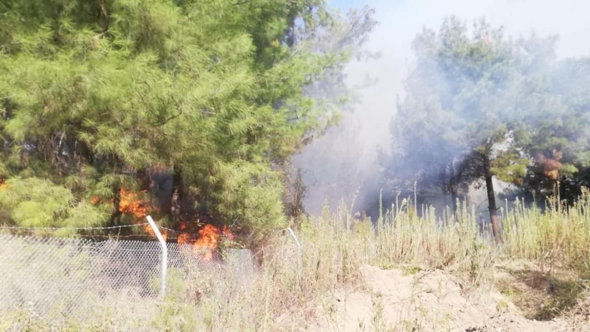 İskenderun ilçesinde ormanlık alanda yangın çıktı