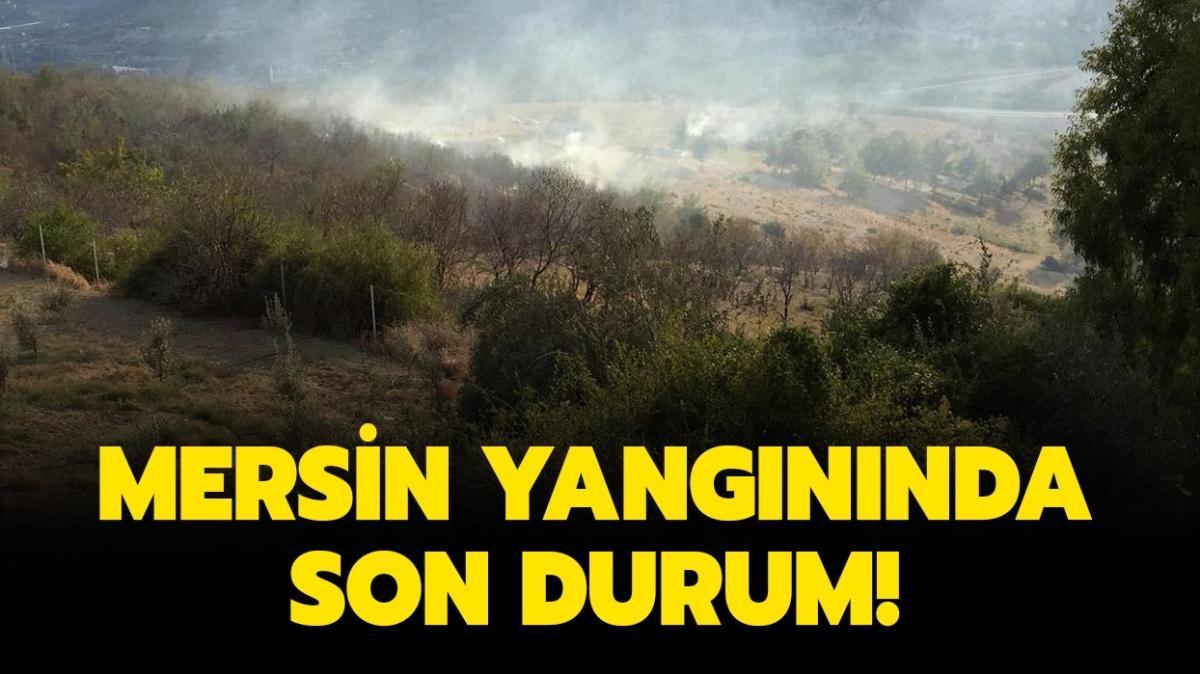 """Mersin orman yangını nerede"""" Mersin yangını son durum nedir"""""""