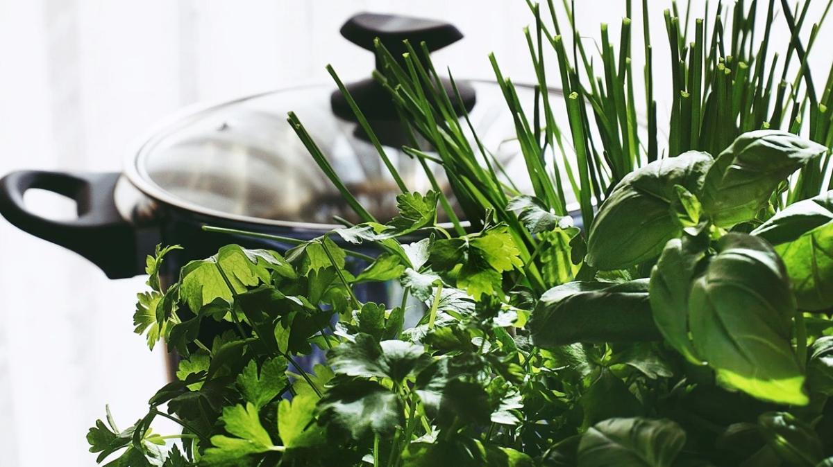Uzmanlar uyardı: Zehirli bitkiler maydanoz ve ıspanak demetlerine karışabilir