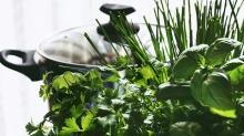 Yeşillikleri yıkarken zehirli bitkilere dikkat!