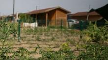 Hobi bahçeleri ile ilgili kanun teklifi TBMM'de kabul edildi
