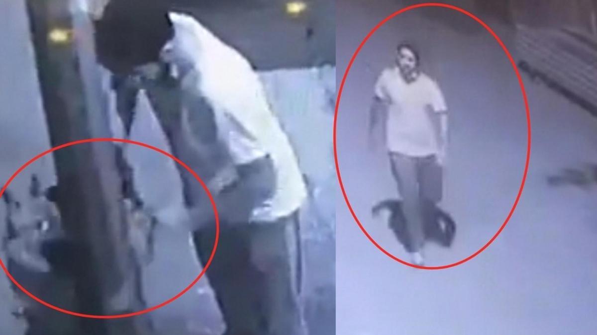 Bursa'da pes dedirten olay: Hırsızlara karşı bağladığı köpeği de çaldılar