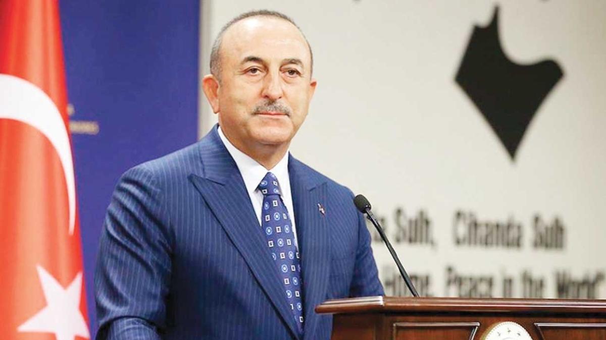 Dışişleri Bakanı Mevlüt Çavuşoğlu: Kutsallara saldırmak ifade özgürlüğü değil