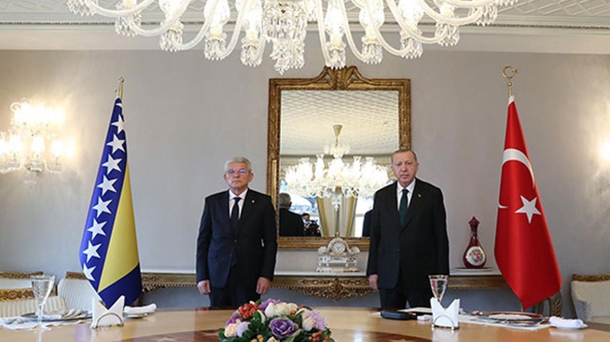 Başkan Erdoğan, Bosna Hersek Devlet Başkanlığı Konseyi Başkanı Caferoviç'i kabul etti