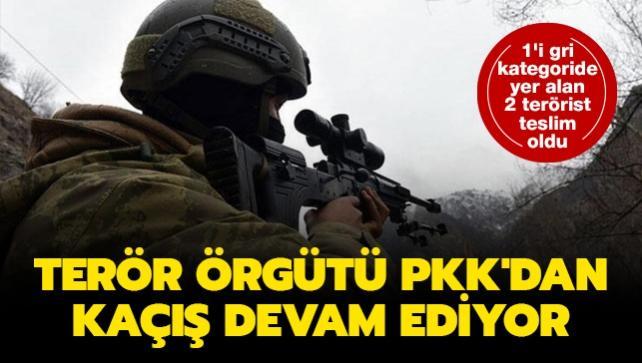 Terör örgütü PKK'dan kaçış devam ediyor: 1'i gri kategoride olan 2 terörist teslim oldu