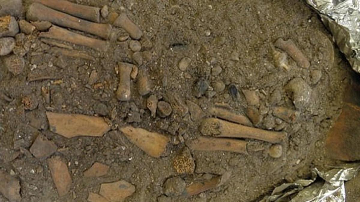 Endonezya'da 8 bin yıllık tarihi keşif
