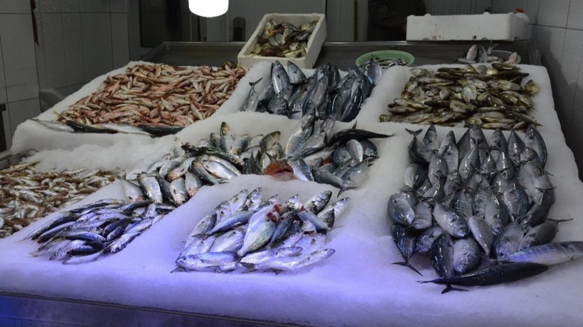 Palamut bu sene hem balıkçının yüzünü güldürdü hem de vatandaşın karnını doyurdu