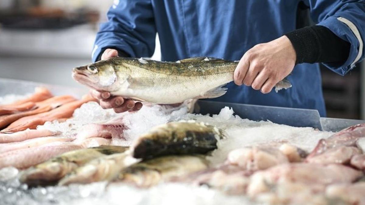 """Balık görmenin rüya tabiri nedir"""" Rüyada balık görmek ne anlama gelir"""""""