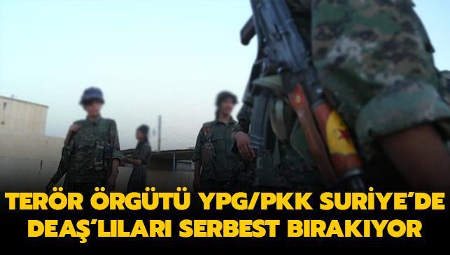 Terör örgütü YPG/PKK, Suriye'de DEAŞ'lı teröristleri serbest bırakıyor