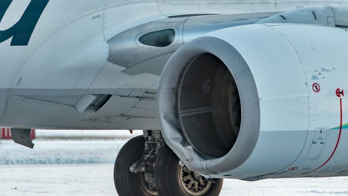 ABD'de inişe geçen uçak bozayıya çarptı