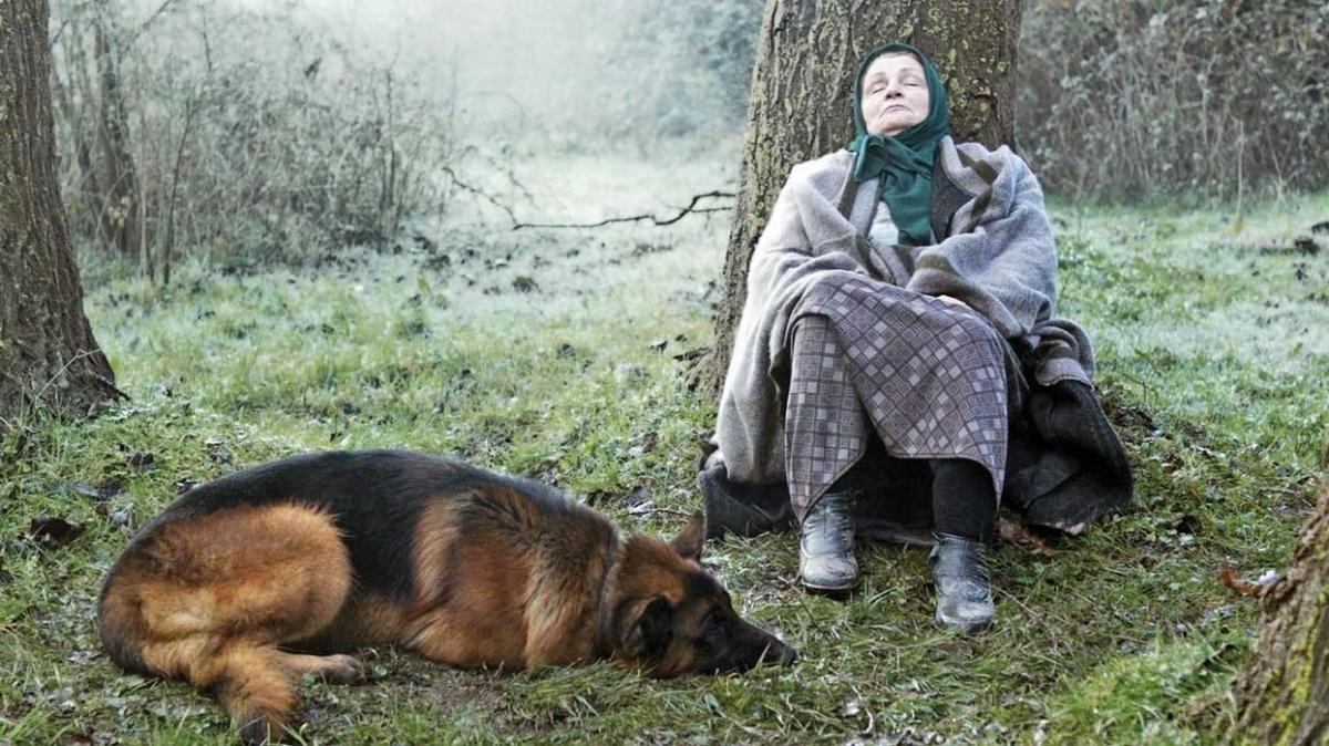 Dostluk Filmleri 'Yunus Emre' anısına buluşuyor