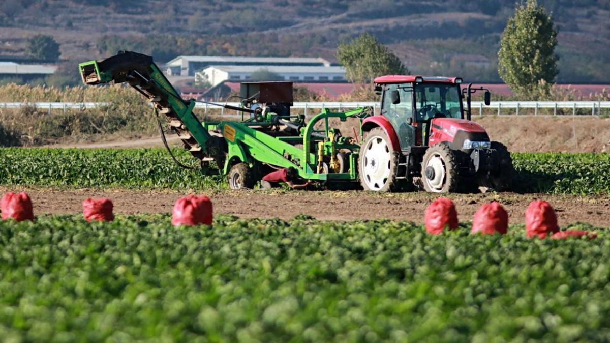 Tarımsal destek hususları Resmi Gazete'de yayımlandı