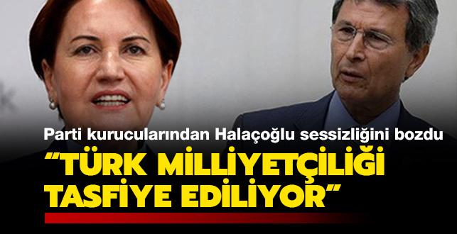 İYİ Parti kurucularından Halaçoğlu sessizliğini bozdu: Türk milliyetçiliği tasfiye ediliyor