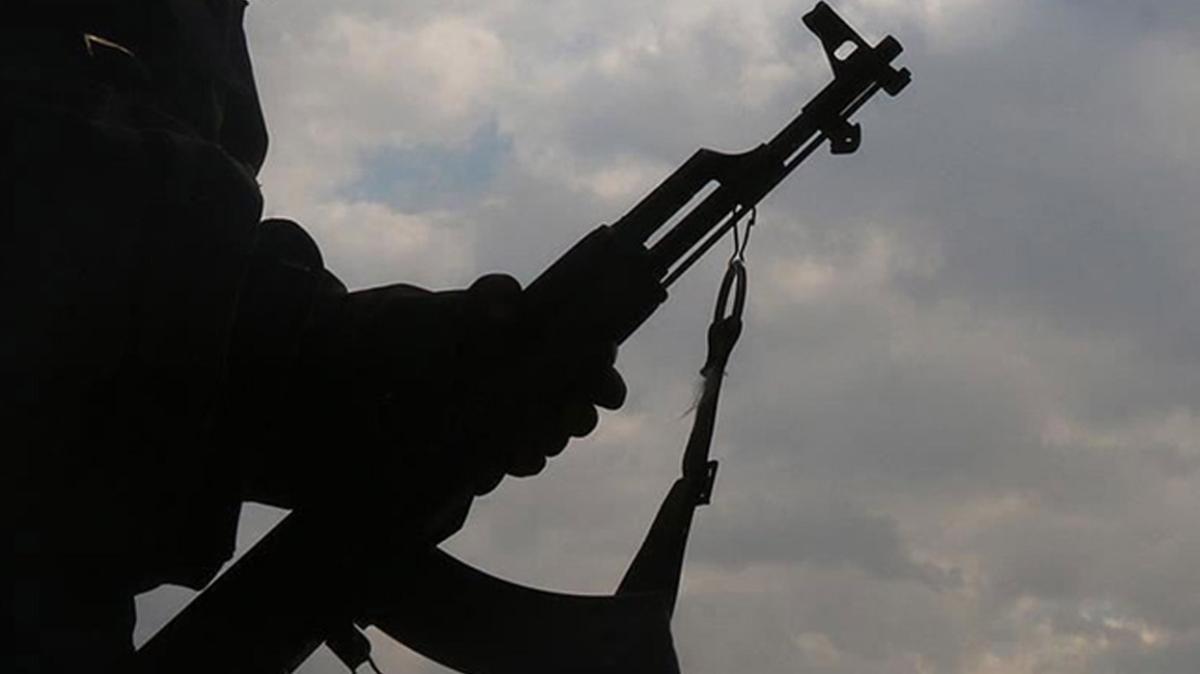 Terör örgütü PKK'nın sözde tim komutan teslim oldu