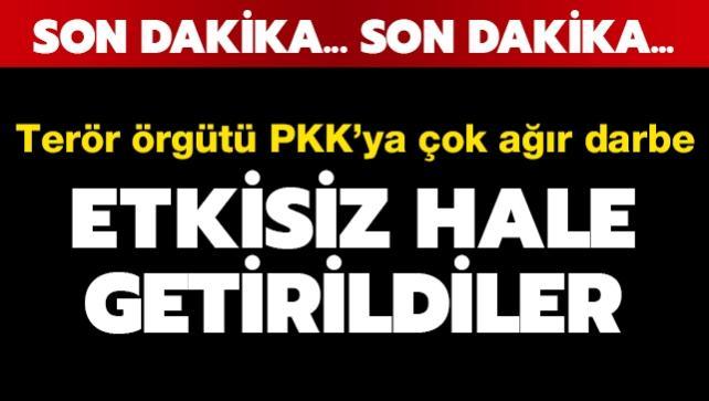 Terör örgütü PKK'ya çok ağır darbe