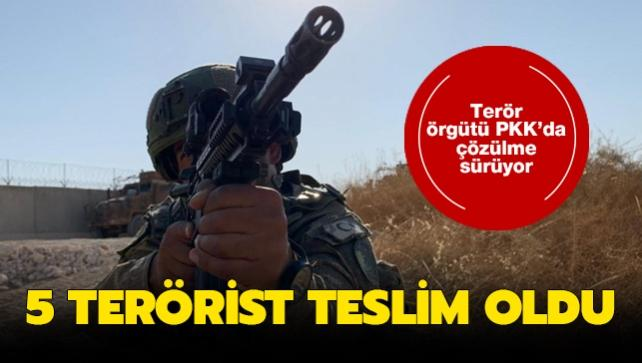 Terör örgütü PKK'dan kaçan 5 terörist güvenlik güçlerine teslim oldu