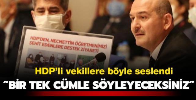 Bakan Soylu HDP'li vekillere seslendi: Bir tek cümle söyleyeceksiniz