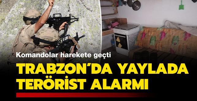 Trabzon'da yaylada terörist alarmı: Komandolar harekete geçti