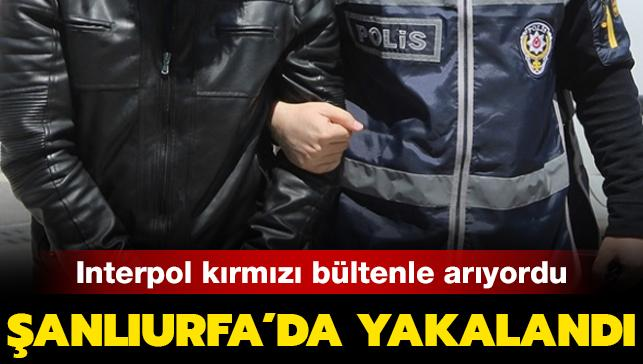 Son dakika haberi... Kırmızı bültenle aranan terörist Şanlıurfa'da yakalandı