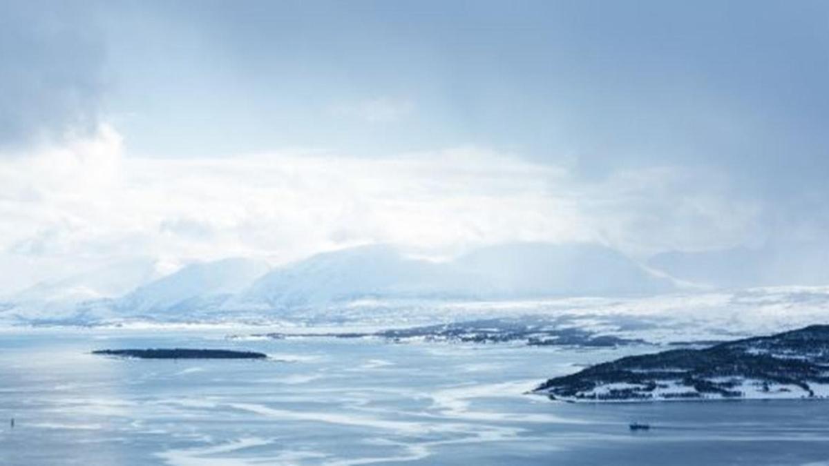 Koronavirüs Antarktika'ya da sıçradı