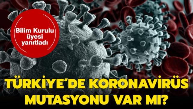 """Türkiye'de koronavirüs mutasyonu var mı"""" Bilim Kurulu üyesi Ateş Kara merak edilen soruyu yanıtladı"""