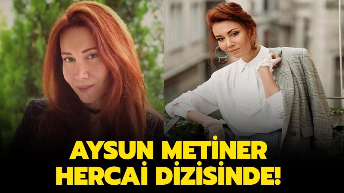 Aysun Metiner'in rol aldığı yapımlar