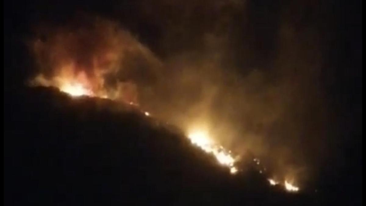 Son Dakika: Hatay'da 4 farklı noktada yangın