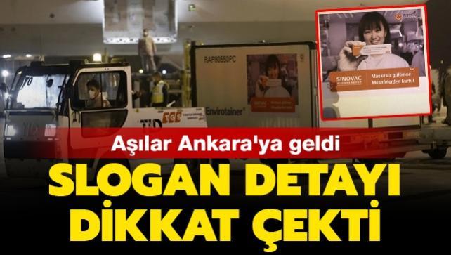 Türkiye'ye gelen Çin aşılarının bulunduğu konteynerlerde dikkat çeken slogan