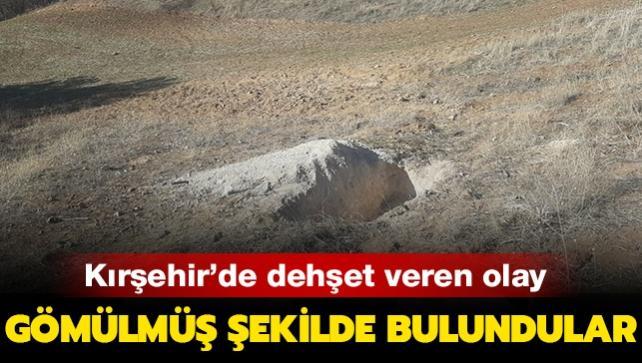 Kırşehir'de dehşet verici olay! Kayıp genç ve kız arkadaşı gömülmüş şekilde bulundu