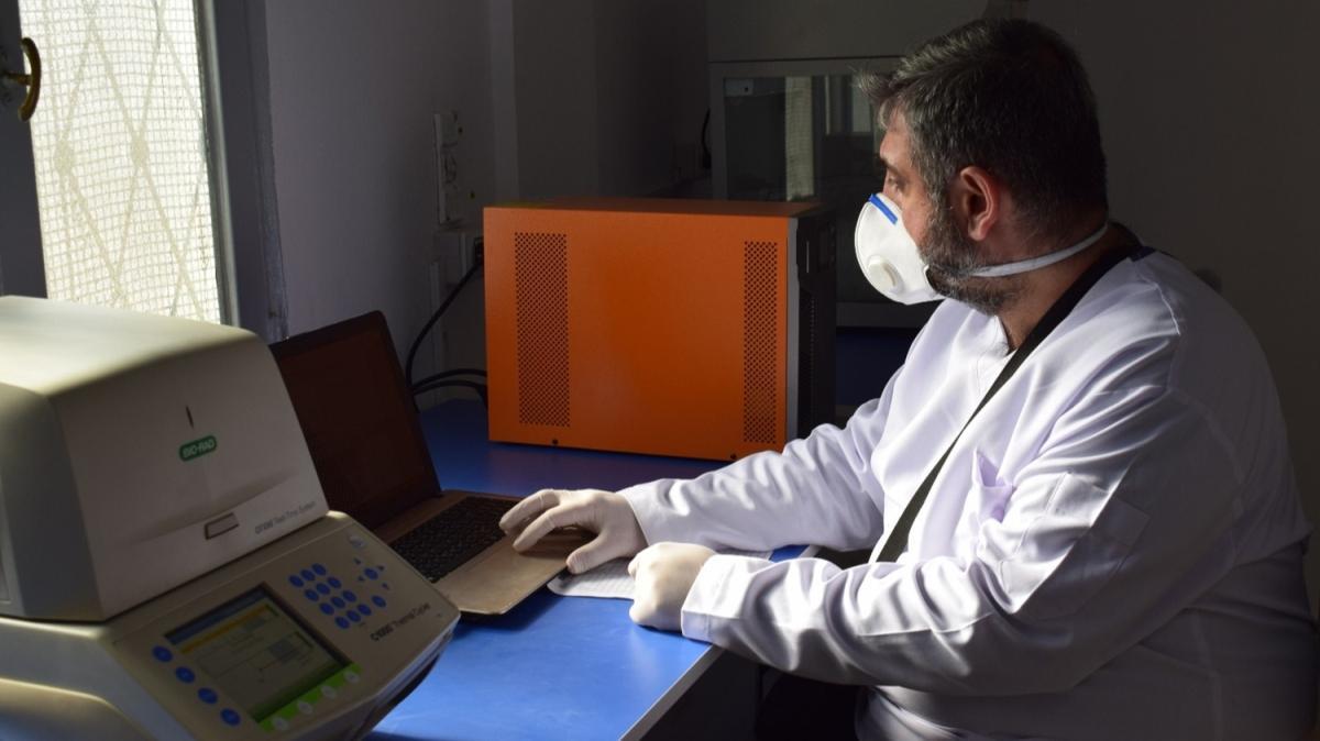 Barış Pınarı bölgesine PCR test laboratuvarı kuruldu