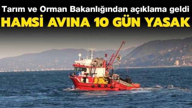 Tarım ve Orman Bakanlığından açıklama: Karadeniz'de hamsi avına 10 gün yasak getirildi