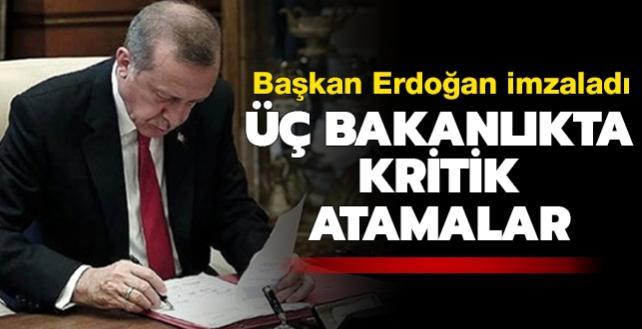 Başkan Erdoğan imzaladı: Bakan yardımcılığına yeni atama