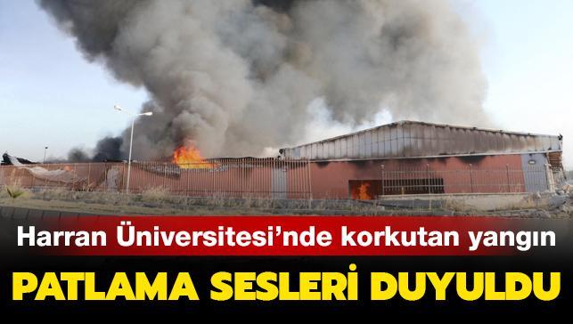 Son dakika haberleri... Harran Üniversitesi'nde yangın