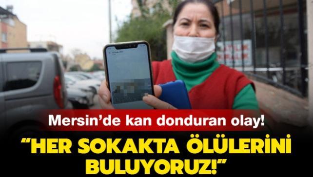 Mersin'de kan donduran olay: Her sokakta ölülerini buluyoruz!