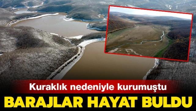 Kuraklık nedeniyle kurumuştu: İstanbul'un su ihtiyacını karşılayan barajlar hayat buldu