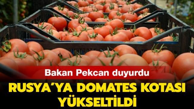 Rusya'ya domates ihracatında kota 250 bin tona yükseltildi
